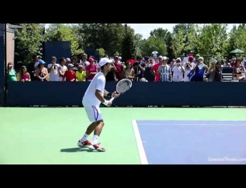 Novak Djokovic Forehands and Backhands in HD